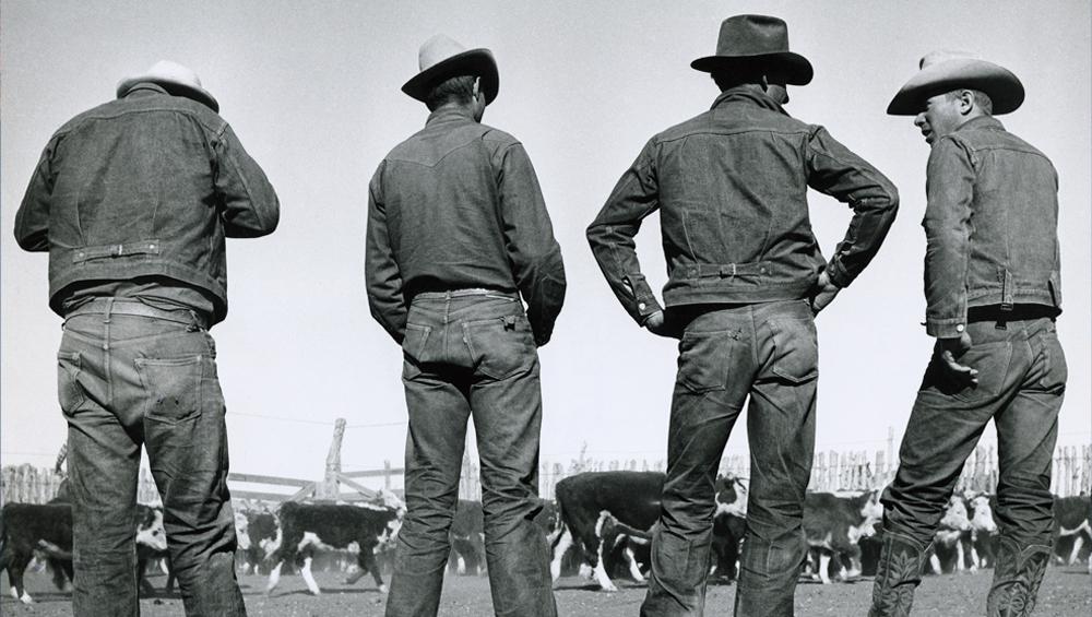 Levi's Jeans - Slider Image 3